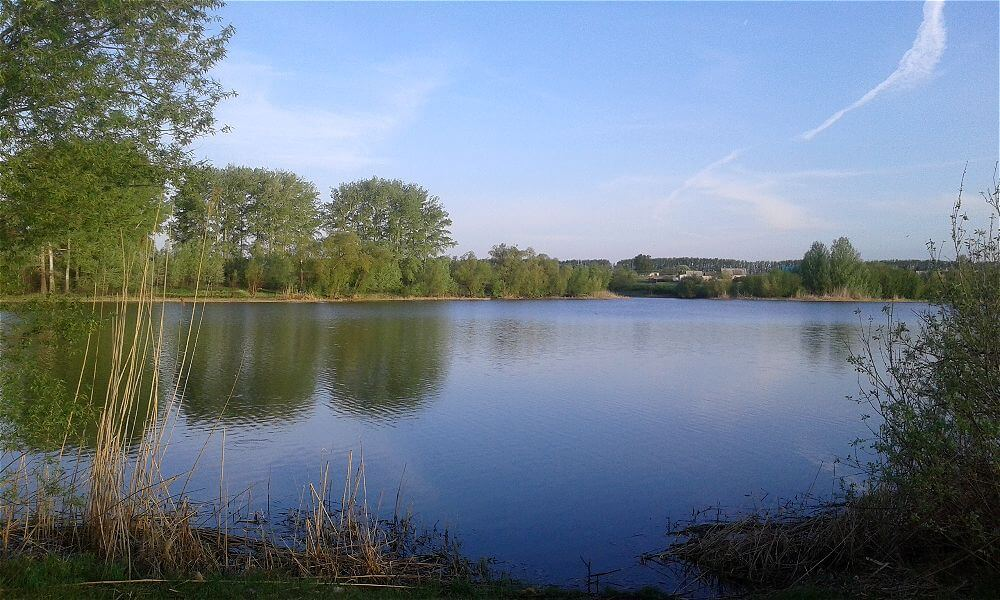 Рыбалка на Крыловском пруду.