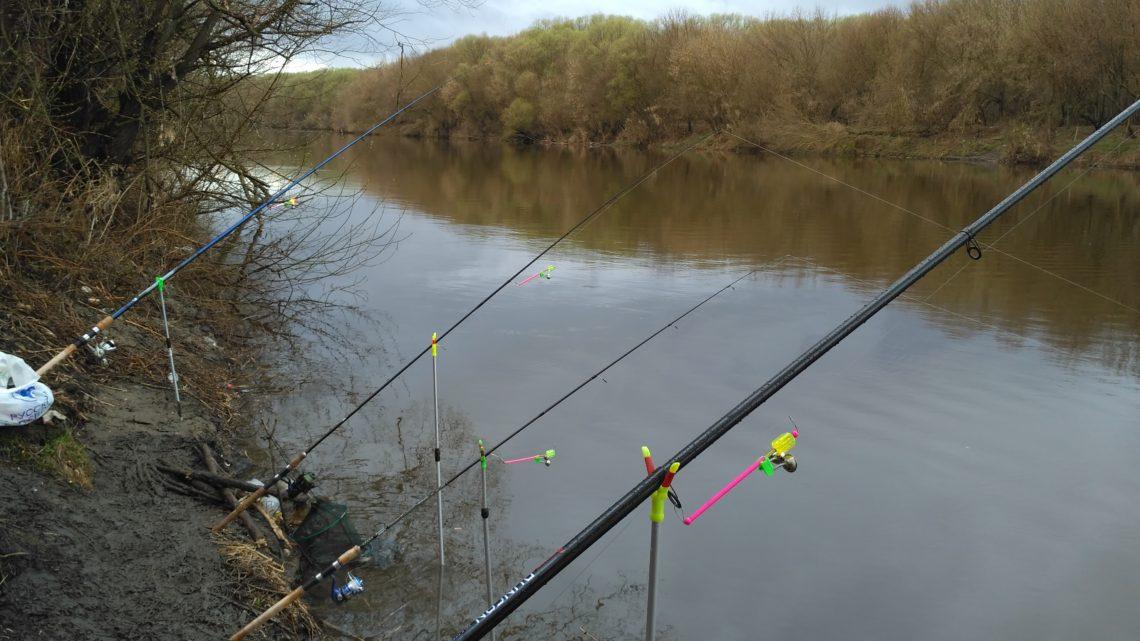 Донная рыбалка что это