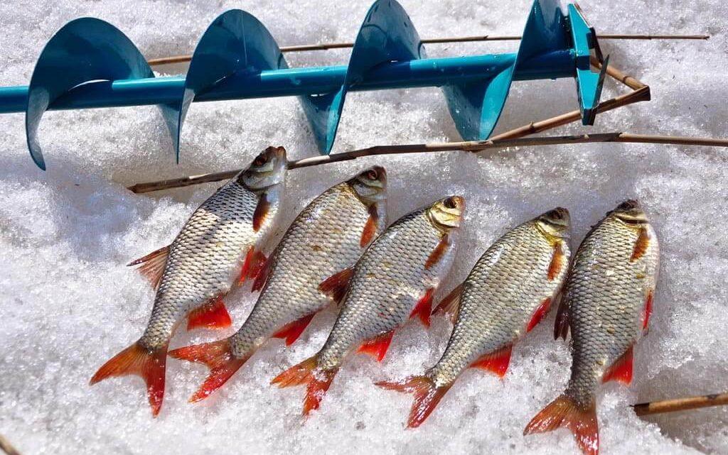 Какие снасти необходимы для зимней рыбалки?