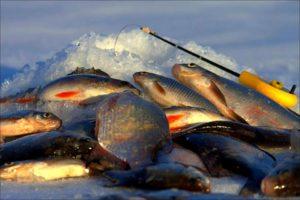 снасти для зимней рыбалки мормышки