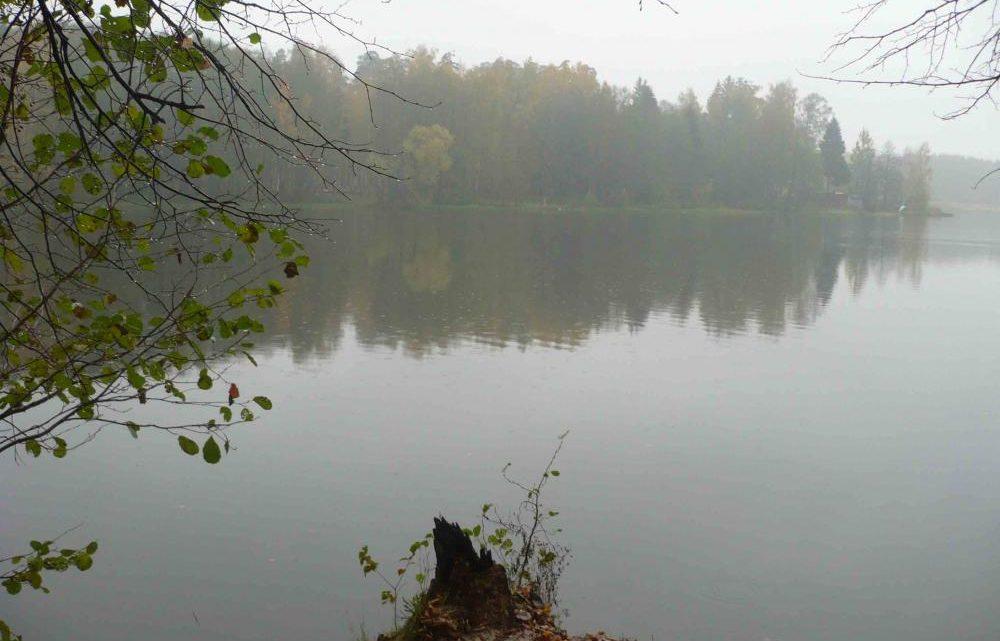 Рыбалка на Московском пруду