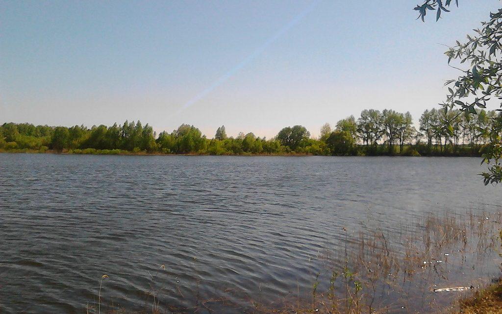 Пруд Сельхозтехника в Верхней Хаве