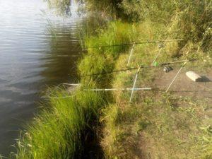 Рыбалка на комсомольском пруду